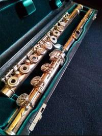 Flauta Lillian Burkart 9k/Ag